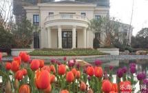 新湖·海德公园 别墅边套 乐清最高端小区 花园200平方 送三个车库