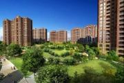 绿化率指的是什么?绿化率越高房子越好吗