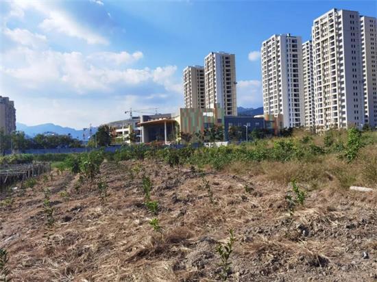 乐清滨海新区又一地块挂牌出让约46亩
